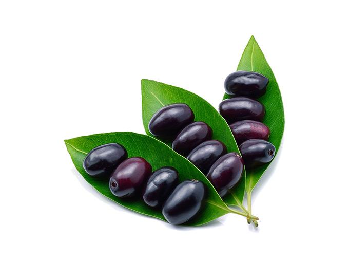 Zur medizinischen Verwendung kommen neben den Früchten auch die Samen, die Rinde und die Blätter des Jambulbaumes.